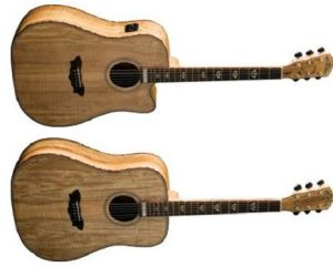 Washburn Limited Edition Rare Wood Acoustic Guitars