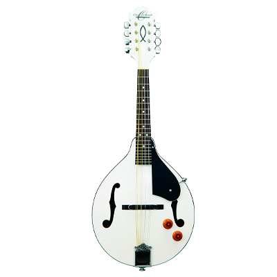 Oscar Schmidt Electric Mandolin