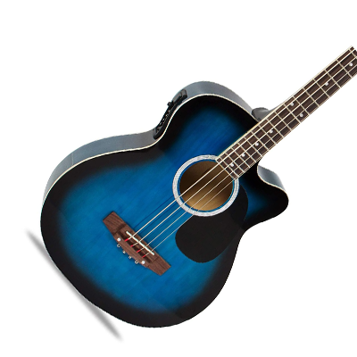 Acoustic Electric Bass Guitar