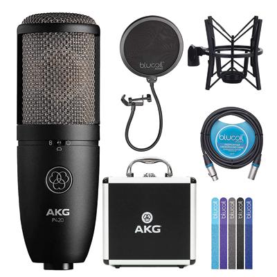AKG Large-Diaphragm Condenser Microphone for Recording Guitars